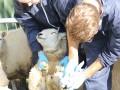 klauwmonster nemen voor onderzoek naar rotkreupel