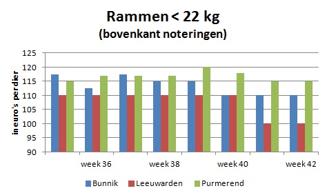 lammerprijzen-rammen-tot-22-kg-veemarkt-bunnik-leeuwarden-purmerend