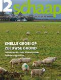 cover vakblad Het Schaap december 2017