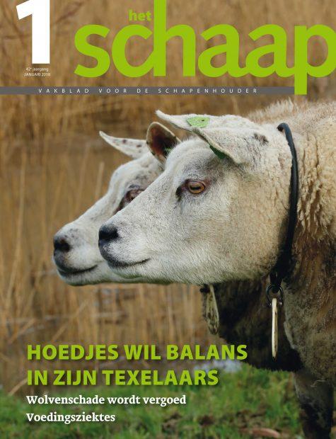 vakblad Het Schaap cover januari 2018