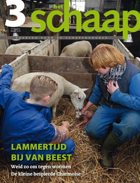 vakblad Het Schaap cover maart 2018