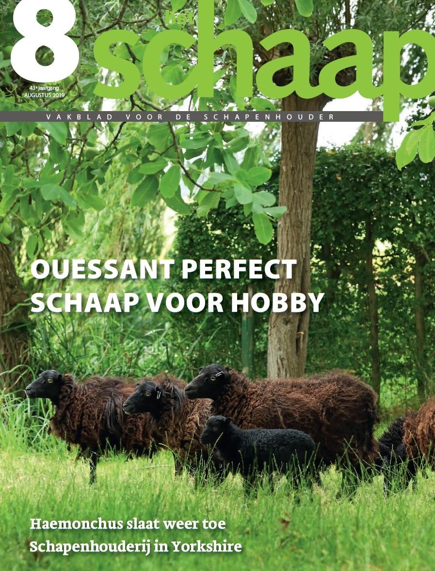 vakblad Het Schaap cover augustus 2019