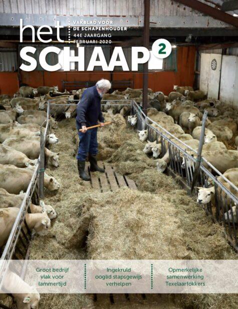 cover vakblad Het Schaap februari 2020