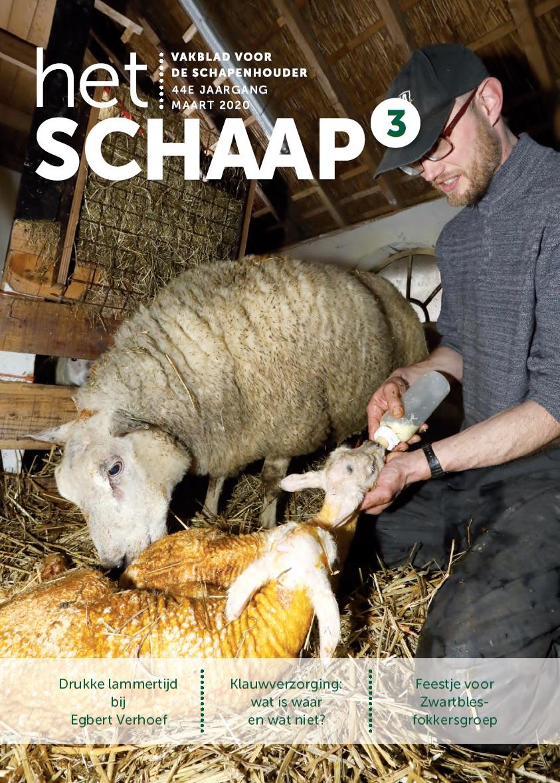 cover maart 2020 vakblad Het Schaap