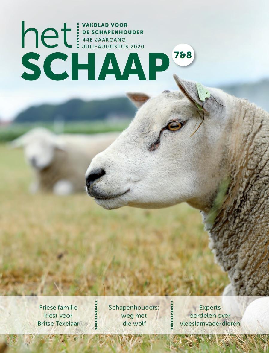 cover juli-augustus 2020 vakblad Het Schaap