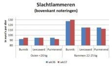 grafiek met marktprijzen van slachtlammeren op veemarkten in Bunnik Leeuwarden en Purmerend