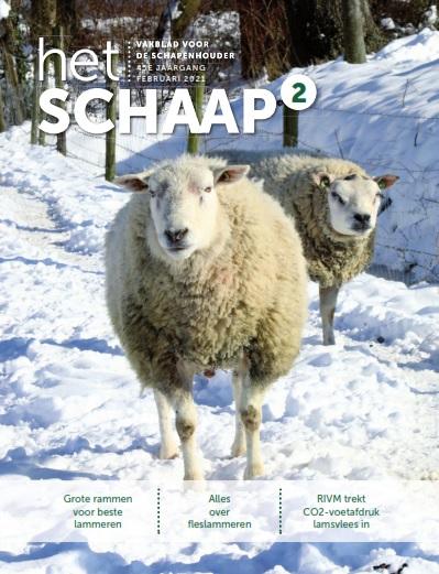 cover vakblad Het Schaap februari 2021