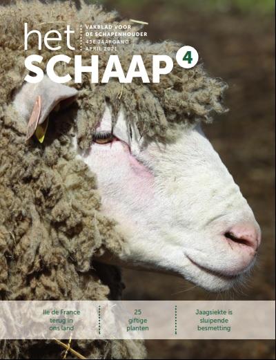 cover vakblad Het Schaap april 2021