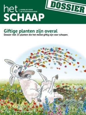Dossier Giftige Planten van Het Schaap