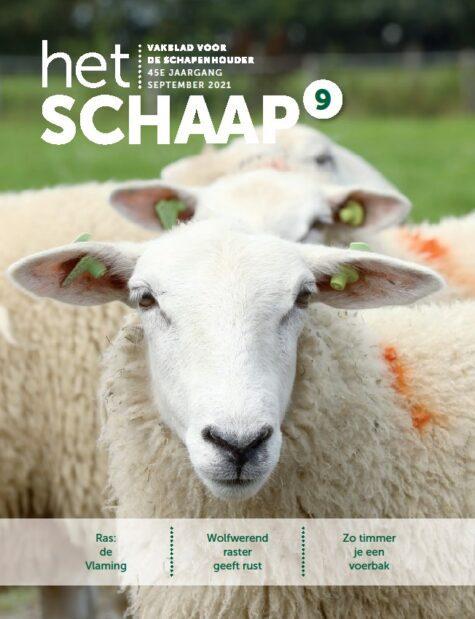cover van vakblad Het Schaap van september 2021