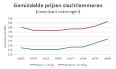 grafiek met gemiddelde marktprijzen van slachtlammeren